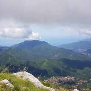 Tour Valle dei Mulini e riserva delle Ferriere: terra dei limoni secolari