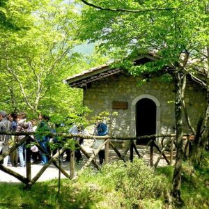 The secrets of the oasis: the wonderful nature of Frassineto